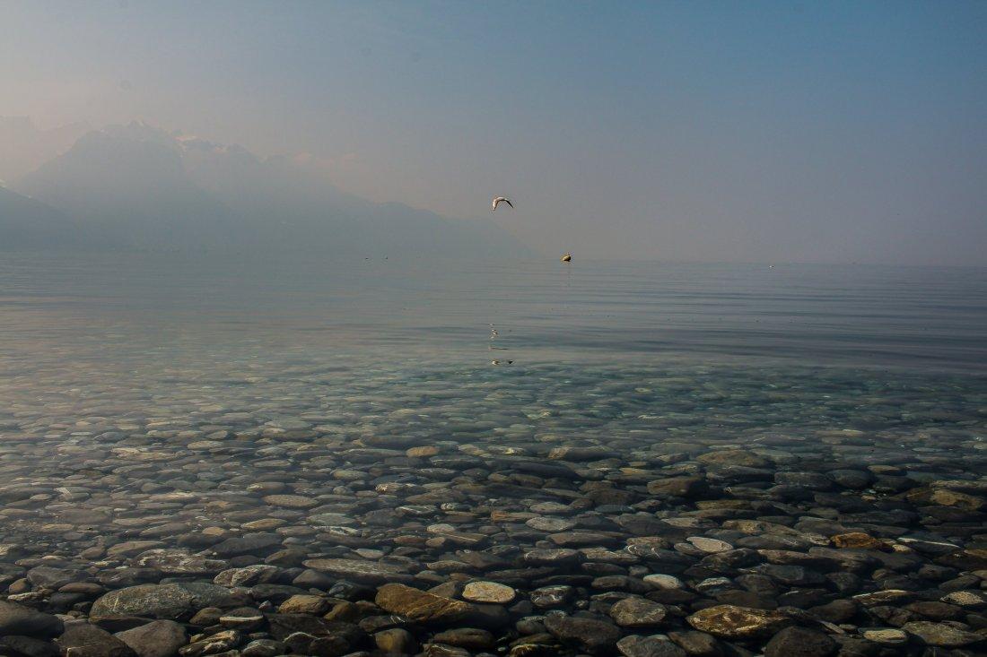 Zwitserland - meer van Genève